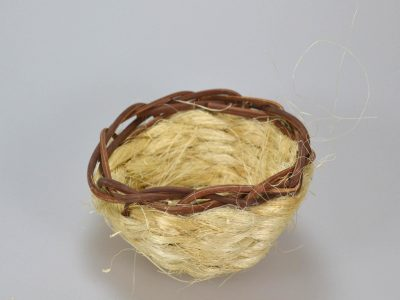 Kanarie Rede i Lyse kokos trevler Randers Volieren
