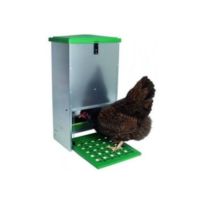 Foder artikler til høns
