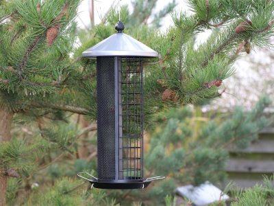 217 659 fugle foderautomat 4