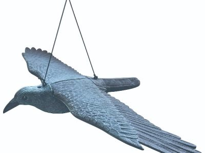 Skræmmer flyvende rovfugl | Randers volieren