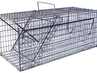 Rottefælde trådvæv Enkelt | Randers volieren
