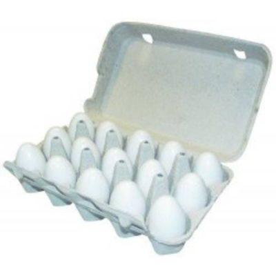 Æggebakke pap m/ låg til 15 æg | Randers volieren