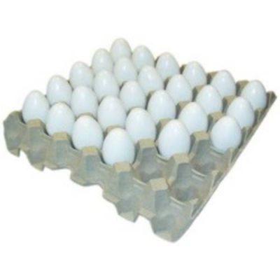 Æggebakke pap til 30 æg | Randers volieren