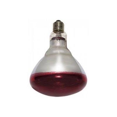 Varmepære Philips rød 250 w | Randers volieren
