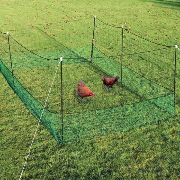 indhegning til høns | Randers volieren